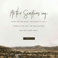 Verse of the Day 11/13/17