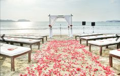 The Setting ‹ Tropical OccasionsTropical Occasions