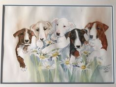 Watercolor Print Of Bull Terriers By Carrie Stuart Parks Hand Signed And Framed