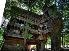 Treehouse condo in in Cumberland County, Tennessee. It's 97 feet high and built on a 80-foot-long white oak. The treehouse has 10 floors and its size is about 8,000 to 10,000 square feet. It took 258,000 nails and $12,000 to build it.