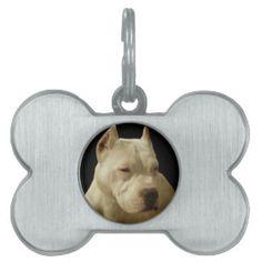 White Pitbull Pet ID Tag