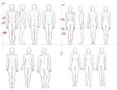「female proportions」の画像検索結果