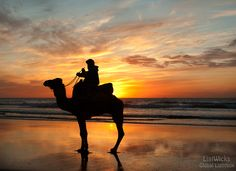 Moroccan camel rider at sunset. Agadir, Moroccan, Landscape Photography, Camel, Celestial, Sunset, Beach, Outdoor, Outdoors