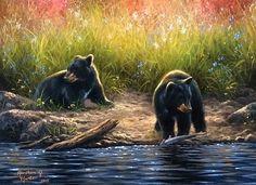 Abraham hunter art animal paintings, bear paintings и bear a Black Bear, Brown Bear, Art D'ours, Teddy Bear Cartoon, Teddy Bears, Bear Paintings, Wildlife Paintings, Canadian Wildlife, Native American Pictures