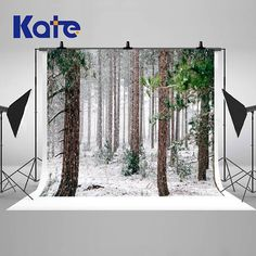 Winter Forest Trees Snow Photography Backdrops Newborn Baby