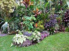 Tropical garden open day at Dennis Hundscheidt's garden in Sunnybank, south Brisbane.