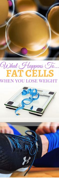 I share the research on what happens to fat cells when we lose weight and gain weight in Part 1 of this fat cell expose!
