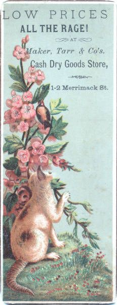Cats in Illustration: Victorian trade card