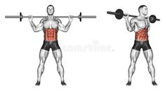 Turns torso with barbell. Turns torso with barbell. Exercising for bodybuilding Target muscles are marked in red. Initial and final steps vector illustration Fitness Gym, Muscle Fitness, Physical Fitness, Mens Fitness, Fitness Tips, Physical Exercise, Fitness Workouts, Best Ab Workout, Gym Workout Tips