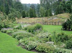 havupuut puutarha - Google-haku