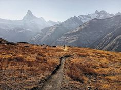 """Das ist doch mal ein Trail! Schon gefahren? #MTBswitzerland via @substance_photography: """"Oberrothorn #Zermatt: Path to Freedom - Its not every day that walkers/Bikers have the chance to tackle the highest #hiking #trail in Zermatt (3415 m). The #view of 38 #mountains above 4000 metres is dramatic and inspiring. Along the way sculptures invite hikers to engage in philosophical contemplation of the mountains all around.The path #climbs steadily into the boundless liberty of unspoilt nature…"""