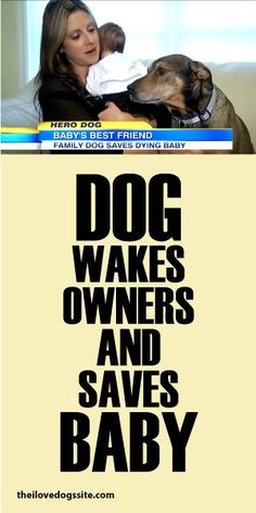 Dog Wakes Owners And Saves Baby!