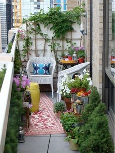 Great use of a small patio space!