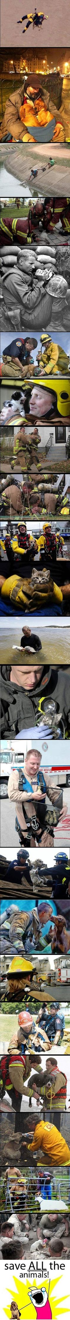 Animal Rescue At It's Finest - 23 Pics - Dump A Day