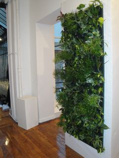 Les 66 meilleures images du tableau Murs végétaux sur Pinterest ...