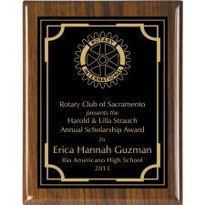 Large selection Economy Award Plaques, custom engraved plaques motivate regarding employees, sales acheivements, volunteers, students. Custom Engraving, Laser Engraving, Award Plaques, Rotary Club, Custom Logos, High Gloss, Awards, Personalized Items, Elegant