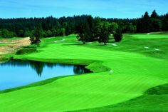 Living in the Northwest we are lucky to have access to such beauty and opulent courses.  Check out 2014's 10 must-play golf courses in the Pacific Northwest http://blog.seattlepi.com/seattlesports/2014/04/10/10-must-play-golf-courses-in-the-pacific-northwest/#22327101=5