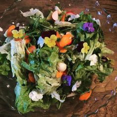 With all this warm weather. Every meal needs a colourful seasonal salad. X #daisydining #daylesford #catering #daylesfordcatering #bespokecatering #bespoke #traditionalcooking #localproduce #salad #cleaneating #healthyfood #seasonal #ediables #vegan #vegetarian #food #foodpics #foodshare #foodstyling #foodgram #foodforfoodies #melbournefood #melbourneeats #events #privatechef #privatedining  #wanderlust #wandervictoria #daisylove #daisystyle