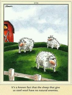 Far Side Cartoons, Far Side Comics, Funny Cartoons, Funny Jokes, Gary Larson Comics, Gary Larson Cartoons, Dont Forget To Smile, Make You Smile, Don't Forget