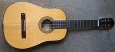 Origen e historia de la guitarra: La guitarra en el ámbito criollo y folclorico