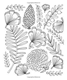 Just Add Color: Botanicals: 30 Original Illustrations To Color, Customize, and Hang