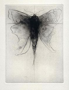 Drypoint by Amy Georgia Buchholz