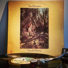 VAN MORRISON Tupelo Honey (1971) Original vinyl  I'm sure the lyrics are: I wanna roo you  Come to me softly Come to me quiet Know what I'm after I'm gonna try it  #vanmorrison #tupelohoney #nowspinning #ortofon #onmyturntable #vinylcollectionpost #vinylcollector #vinylporn #recordcollection #vinylcollection #originalvinyl #cratedigging #record #vinyljunkie #vinyladdict #turntable #records #vinylcollector #vinylcollectionpost #vinylrecord #music #vinylporn #instavinyl #recordcollection…