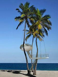 A Palm tree house?
