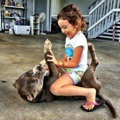 Yeah pit bulls are so dangerous huh? You morons who think so should educate yourself! Dogs And Kids, I Love Dogs, Cute Dogs, Dogs And Puppies, Doggies, Pit Bulls, Animals And Pets, Cute Animals, Nanny Dog