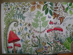 Johanna Basford | Picture by Celine | Colouring Gallery