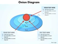 An onion diagram is a kind of chart that shows the dependencies an onion diagram is a kind of chart that shows the dependencies among parts of an organization or process the chart displays items in concentric c ccuart Gallery