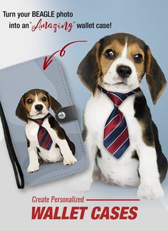 Turn your BEAGLE photo into amazing wallet case! Cute Dog Pictures, Dog Photos, Cute Dogs And Puppies, Cutest Dogs, Adorable Dogs, Ugly Animals, Lacey Chabert, Cute Beagles, My Big Love