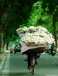 Vietnam….love this look. Can see an old bike with oodles of flowers at reception entry.  | followpics.co