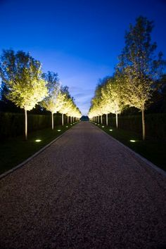 Exterior Design, Admirable Traditional Landscape With Gravel Driveway Designs With Charming Driveway Lights Decoration: Enchanting Driveway . Driveway Lighting, Exterior Lighting, Backyard Lighting, Pathway Lighting, Tree Lighting, Outside Lighting Ideas, Entrance Lighting, Garage Lighting, Ceiling Lighting