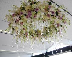 Amazing floral chandelier!