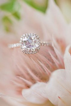 Cushion cut with halo and thin band.