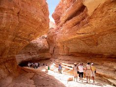 Circuit Passion et Evasion Sahara :: New Look Travel Agence de voyage en Tunisie