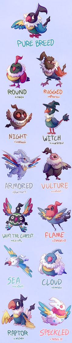 Chatot Variations by Umberon9 on DeviantArt