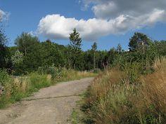 Uphill, summer