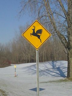 Critter crossing sign in Washington Township Michigan.  It disappeared not to long after I took this picture.  :(
