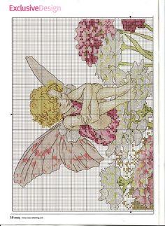 Candytuft Fairy   6/6