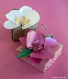 Paper Orchid Gift Topper