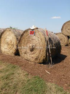 Check out Central Texas Mom's Blog about the Fall Festival & Corn Maze! http://centraltexasmom.com/