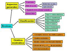 Science Cells, Medicine Notes, Big Data Technologies, Medical Anatomy, School Study Tips, Med School, Pharmacology, Biochemistry, Clinic
