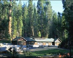 Giant Forest Museum in Sequoia