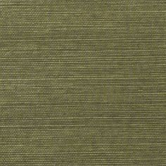 Thibaut Grasscloth Resource - Shang Extra Fine Sisal - Wallpaper - Avocado