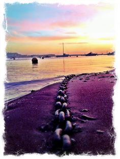 Shaldon beach - December dawn Devon, My Favorite Things, Beautiful Places, December, Beach, Water, Pictures, Travel, Outdoor