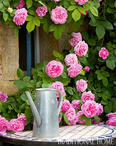 British Garden in the French Countryside | Traditional Home - Gertrude Jekyll roses
