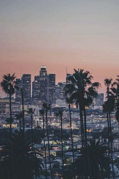Sunset in the city of angels Los Angeles California Los Angeles Wallpaper, South Korea Photography, San Diego, Sunset Wallpaper, Wanderlust, City Of Angels, California Dreamin', Santa Monica, Beautiful Places