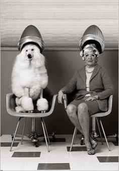 Aller chez le coiffeur. J'adore.